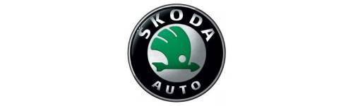 Produits Forge pour SKODA