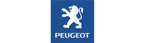 Peugeot turbo manifold