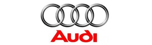 Collecteurs Audi